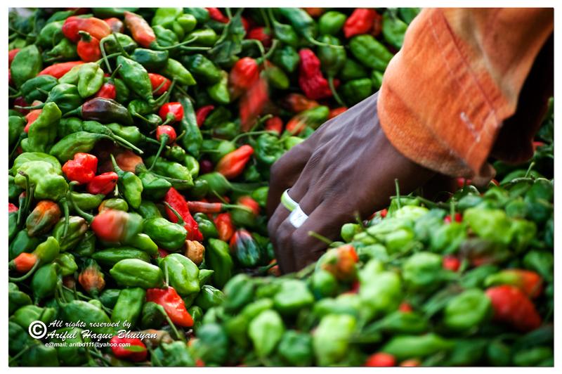 Chili Seller