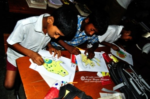 Students drawing frogs
