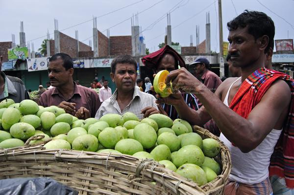 People around the mango