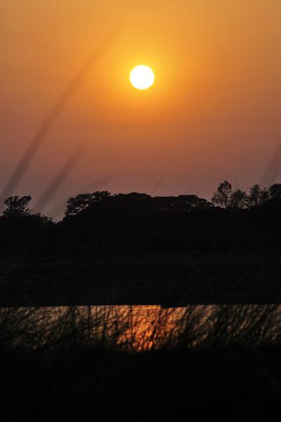Sunset at Padma